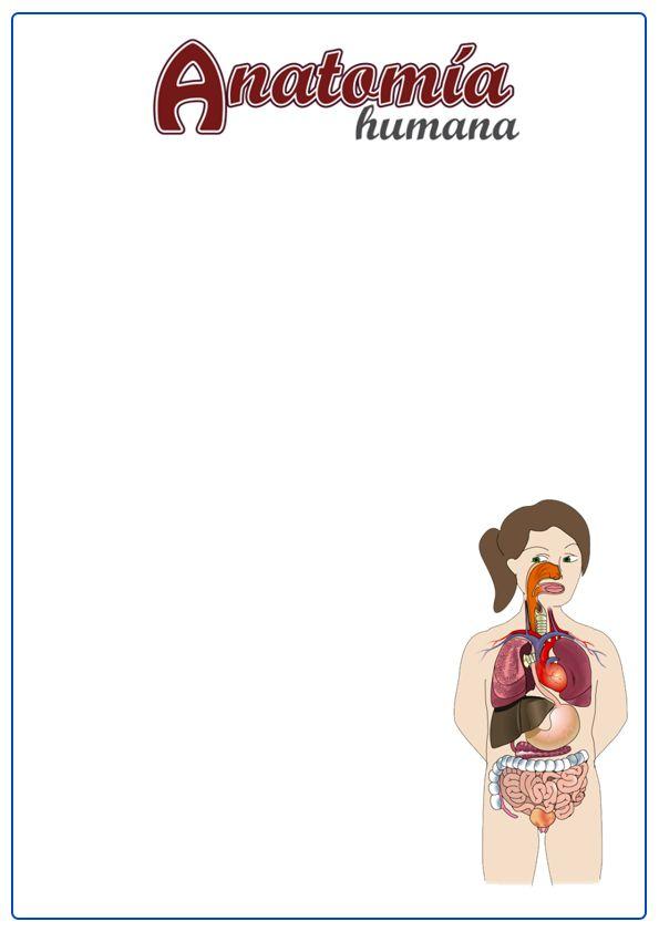 Caratulas de anatomía