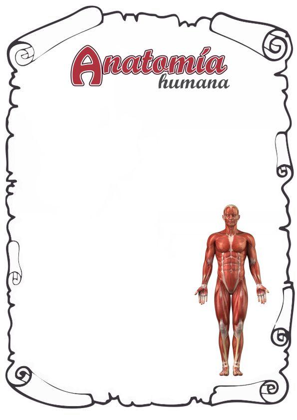 Portadas de Anatomía