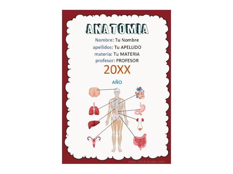 Caratula y Portada de Anatomía en Word 1