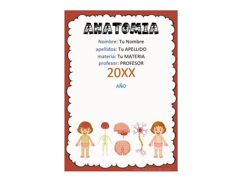 Caratula y Portada de Anatomía en Word 2