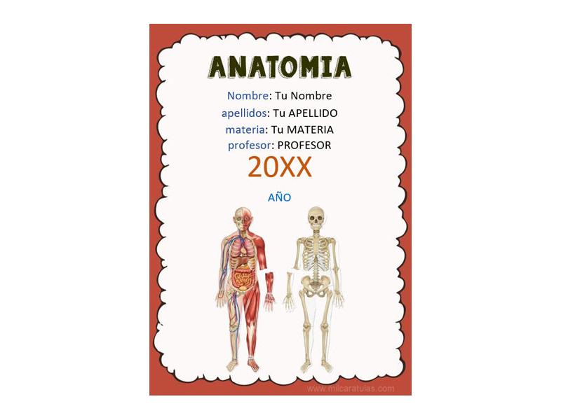 Caratula y Portada de Anatomía en Word 3