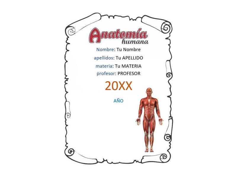 Caratula y Portada de Anatomía en Word 5