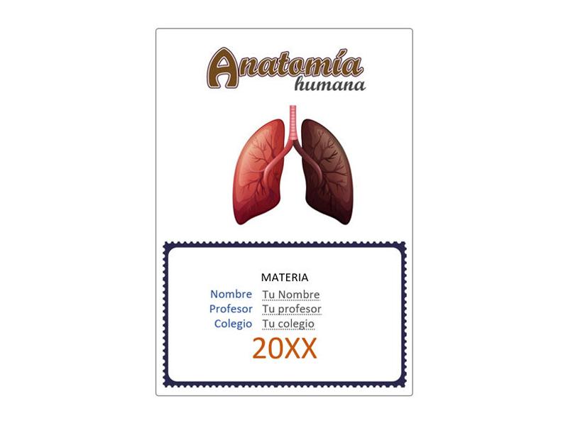 Caratula y Portada de Anatomía en Word 7