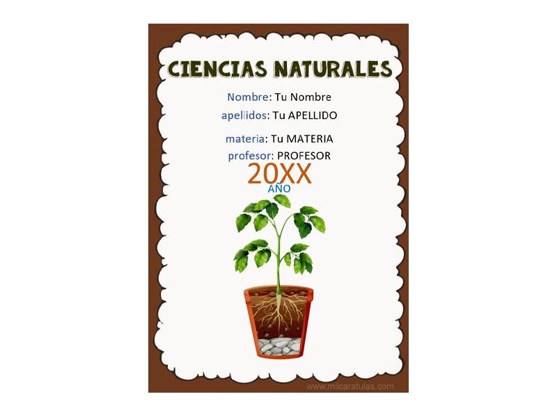 Caratula y Portada de Ciencias Naturales en Word 1